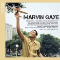 Gaye, Marvin: Icon
