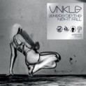 Unkle: Where Did the Night Fall