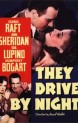 Jezdci noci ( They Drive By Night )